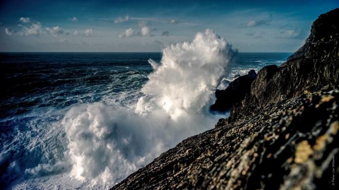 oceaan PJ Willems