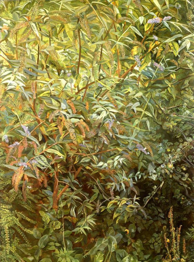 lucian freud garden